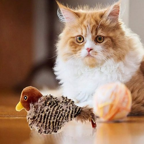 Singing Sparrow Shaped Bird  Cat Toy